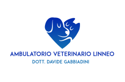ambulatorio veterinario linneo